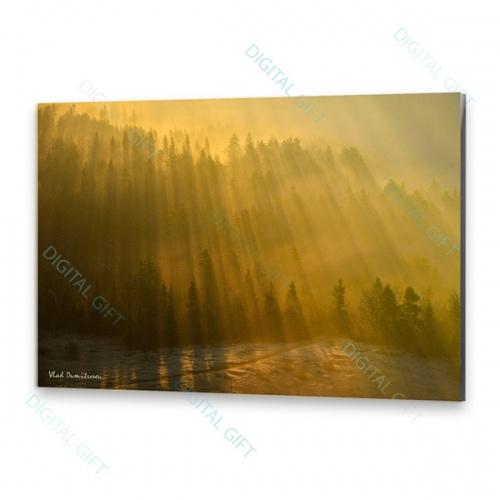 Tablou simplu - Ploaie de soare 0
