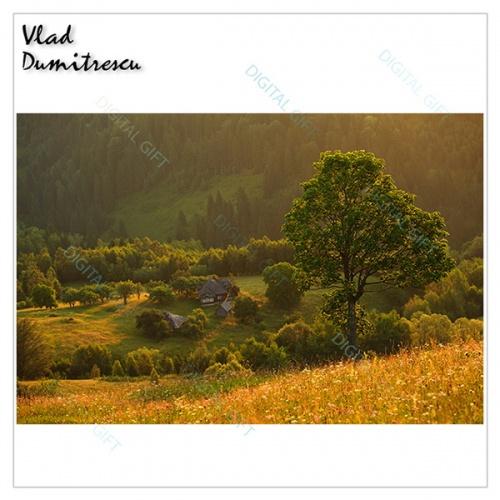 Tablou simplu - Priveliște munteană 1