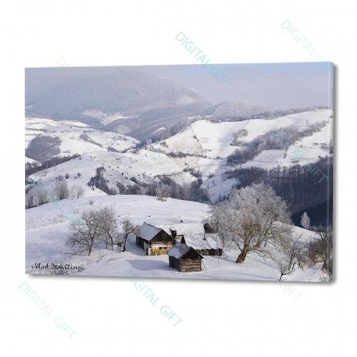 Tablou simplu - Sub zăpadă 0