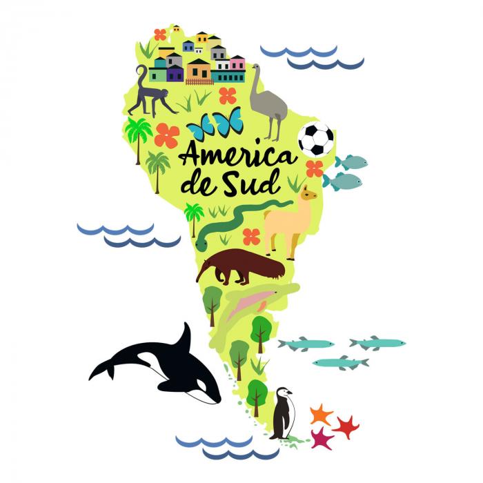 Tricou unisex pentru copii - America de Sud [1]