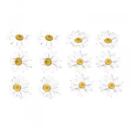 Set stickere auto - Margarete albe [1]