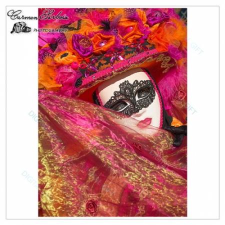 Tablou simplu - Carnaval la Veneția 061