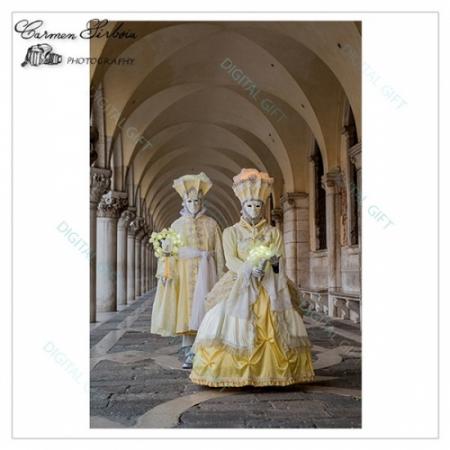 Tablou simplu - Carnaval la Veneția 161