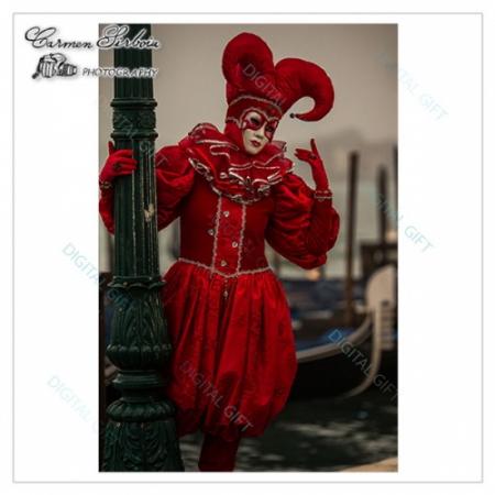 Tablou simplu - Carnaval la Veneția 311