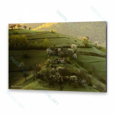 Tablou simplu - Peisaj de primăvară0