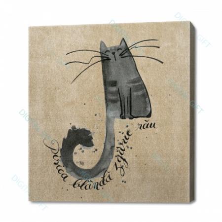 Tablou simplu - Pisica blândă zgârie rău0