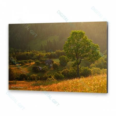 Tablou simplu - Priveliște munteană0