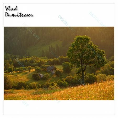 Tablou simplu - Priveliște munteană1