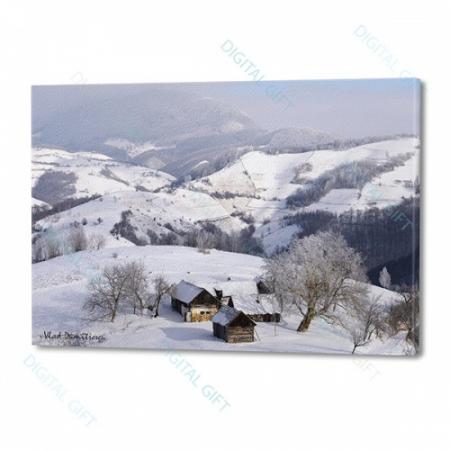 Tablou simplu - Sub zăpadă0