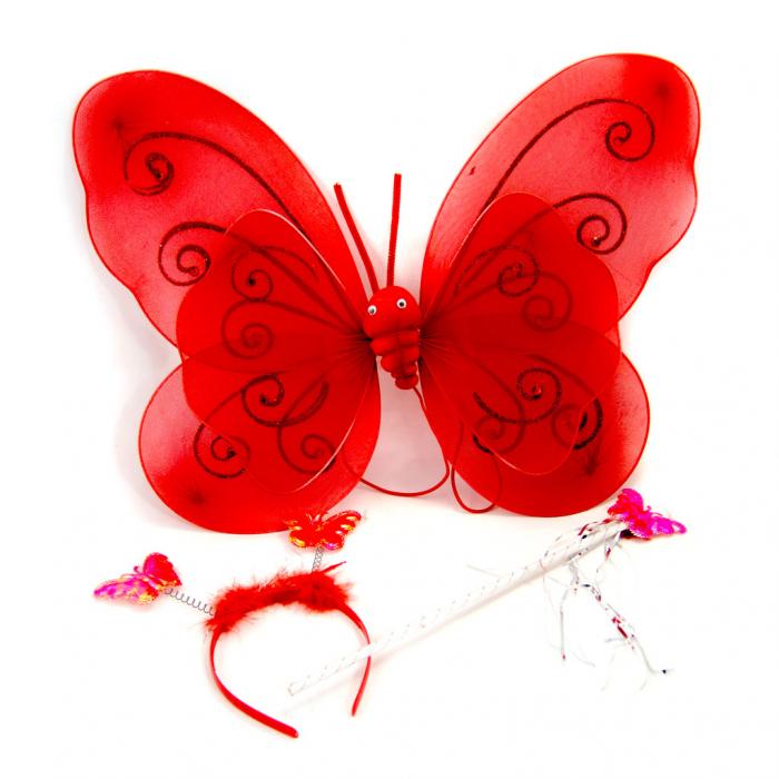 Aripi fluture cu bagheta si cordeluta 0