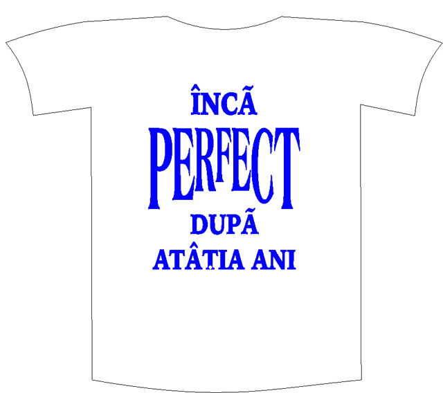 "Tricou imprimat ""Inca perfect"" 0"