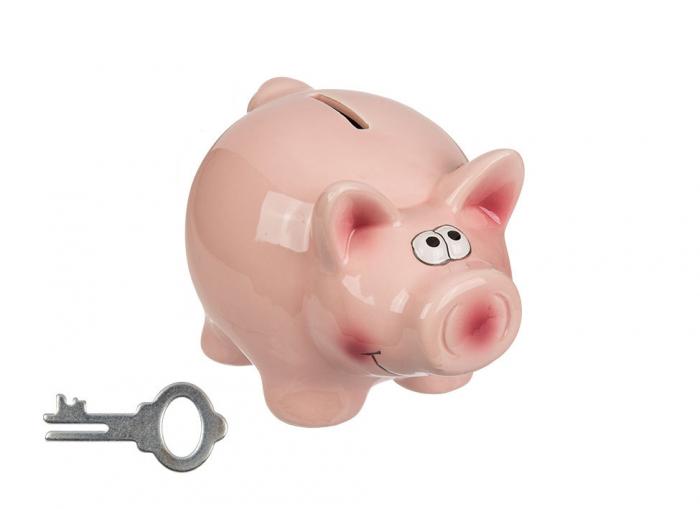 Pusculita porc cu cheita 0