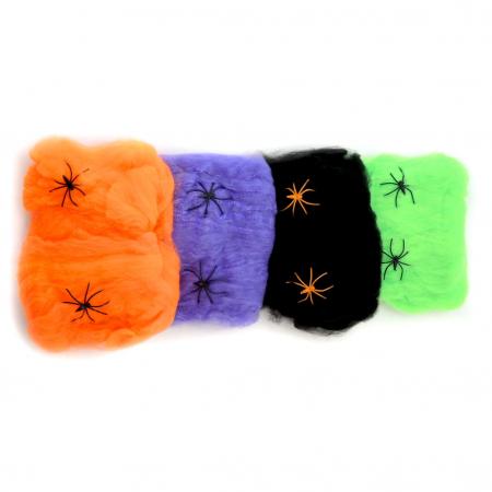 Panza de paianjen colorata