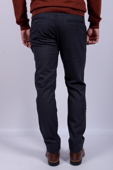 Pantaloni BRAWN de barbati [3]