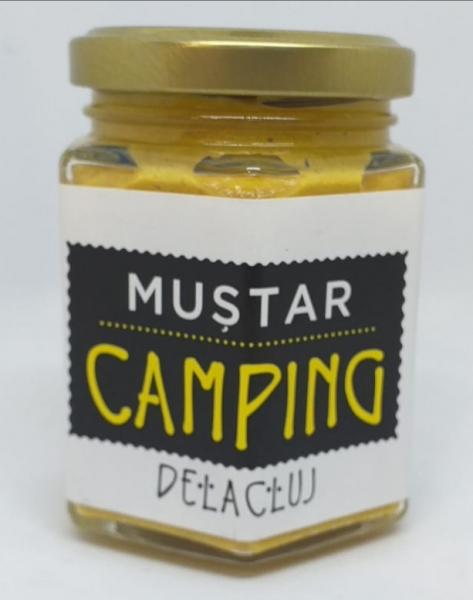Mustar Camping de la Cluj 0