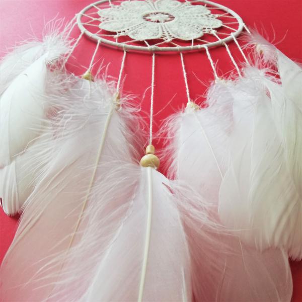 Dreamcatcher Perfect White 1