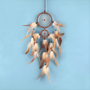 Dreamcatcher Fox0