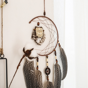 Dreamcatcher Sleeping Owl0