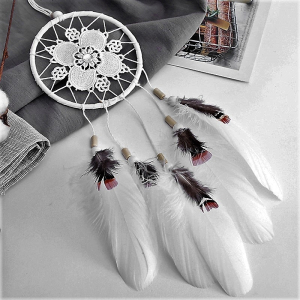 Dreamcatcher White Dream0