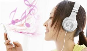 Casti Bluetooth Bluedio H+ Bluetooth 4.1, Wireless, Stereo, microfon incorporat, microSD, FM3
