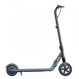 Trotineta electrica pliabila Segway Ninebot eKickScooter Zing E10 Gri, 200W, Autonomie 10km,Viteza maxima 16km/h, IPX4 [0]
