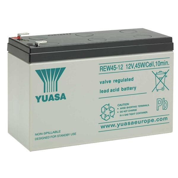 Acumulator VRLA Yuasa REW45-12 12V, 8Ah-big