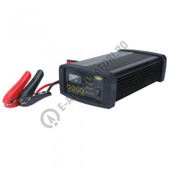 Incarcator Ring SmartCharge Pro 12V 2-50A cod RSCPR500
