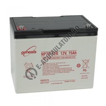 UPS pentru centrale termice Cyber Power CPS600E 600VA 420W cu baterie Genesis NP75-121