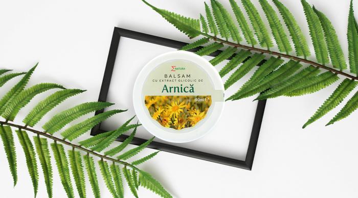 Balsam cu extract glicolic de arnică - cutie 50 ml, ∑NATURA [0]