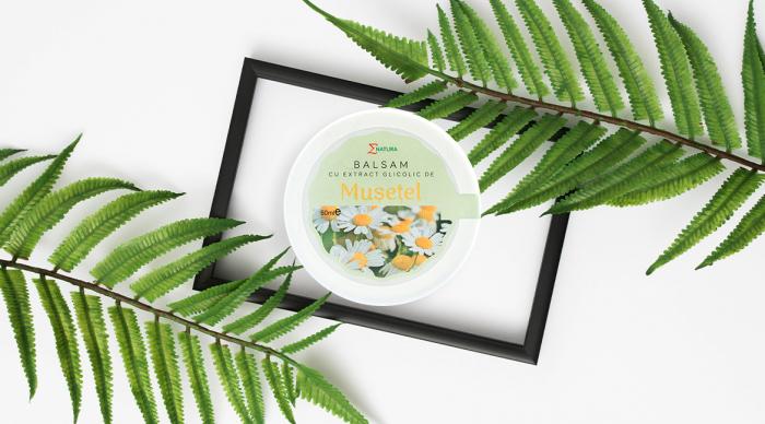 Balsam cu extract glicolic de muşeţel, cutie 50 ml, ∑NATURA [0]