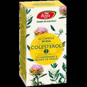 Colesterol 2 cu anghinare si frunze de maslin, M105A, 63 capsule [0]
