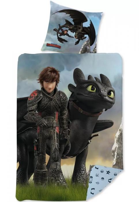 Lenjerie de pat pentru copii  Dragons How To Train Your Dragon 140×200 cm, 70×90 cm [0]