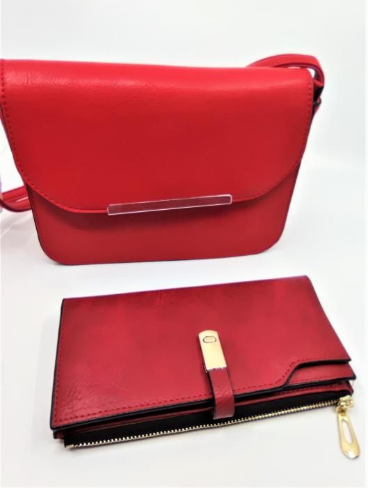 Pachet Promo Geanta casual F9750 si portofel din piele ecologica AB2022LR [1]