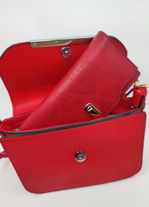 Pachet Promo Geanta casual F9750 si portofel din piele ecologica AB2022LR [2]