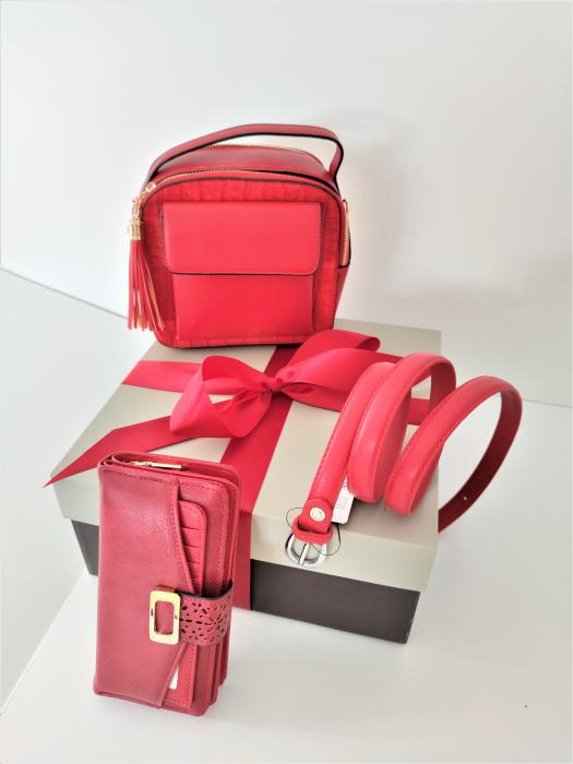 Pachet Promo Geanta casual H601, portofel A151R si curea rosie din piele ecologica [0]
