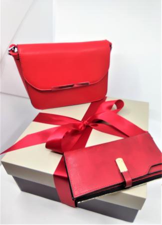 Pachet Promo Geanta casual F9750 si portofel din piele ecologica AB2022LR [0]
