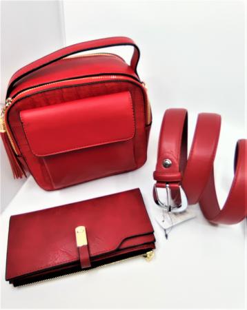 Pachet Promo Geanta casual H601, portofel AB2022LR si curea rosie din piele ecologica [1]