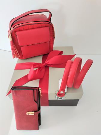 Pachet Promo Geanta casual H601, portofel AB2022LR si curea rosie din piele ecologica [0]