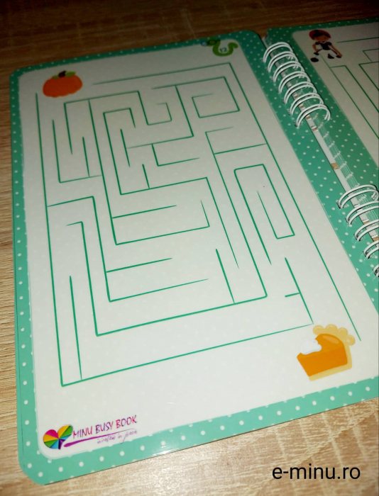 Labirinturi - caiet cu marker 12