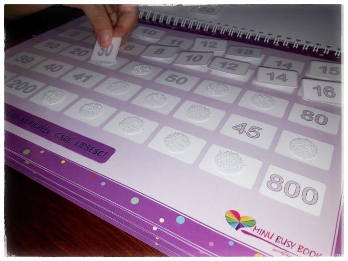 Minu Busy Book 13