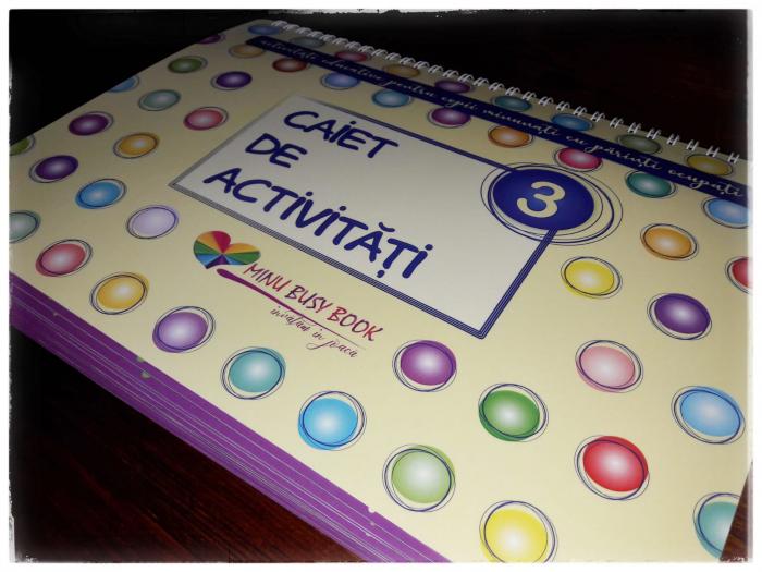 Minu Busy Book 32