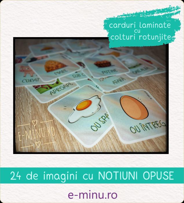 Carduri - NOTIUNI OPUSE [0]