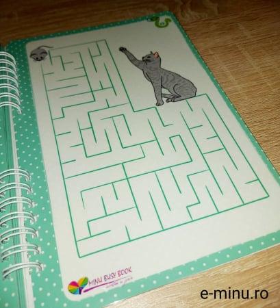 Labirinturi - caiet cu marker [18]