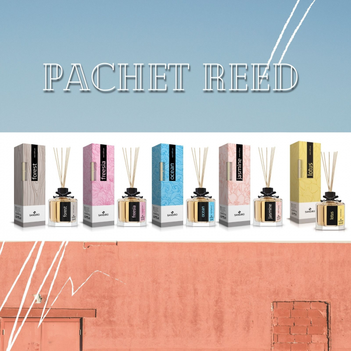 Pachet 2x Reed Diffuser [0]