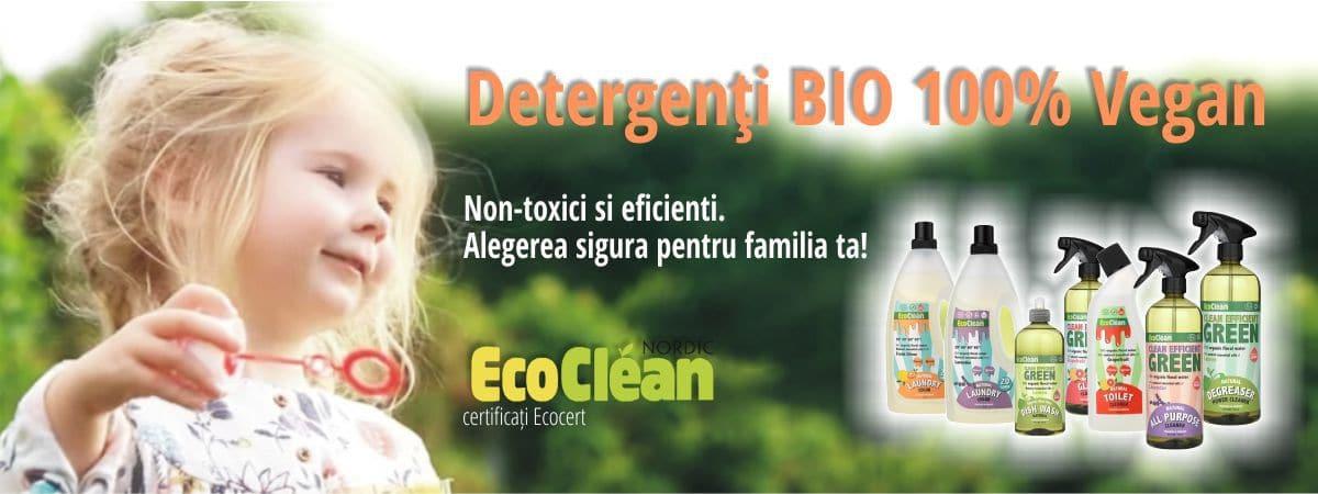Curatenie Ecologica