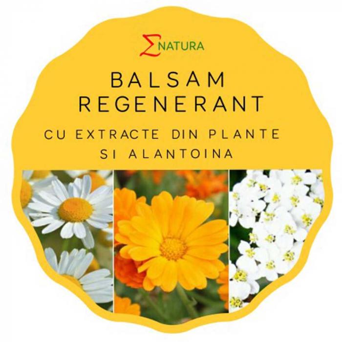 Balsam regenerant, 50ml - ENATURA [0]