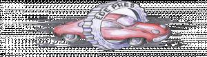 www.edepres.ro
