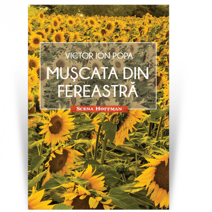Muscata din fereastra - Victor Ion Popa 0
