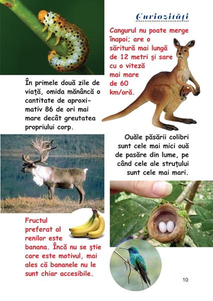 Curiozitati din lumea animalelor 1