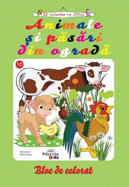 Animale si pasari din ograda - carte de colorat 0